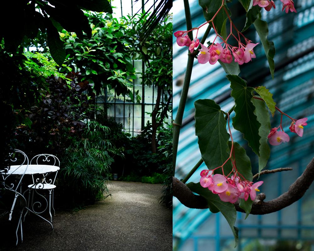 ballade et fleurs